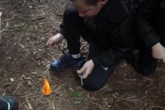 woods-9